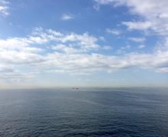 木更津周辺の潮干狩りの時期と常連さんのコツ