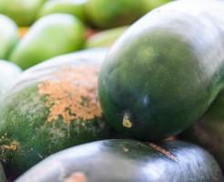 冬瓜の下ごしらえと種と皮の有効活用法