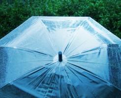ビニール傘の捨て方で確実に失敗しない方法