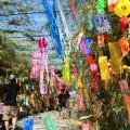 七夕の笹の由来と時代背景、願い方の注意点