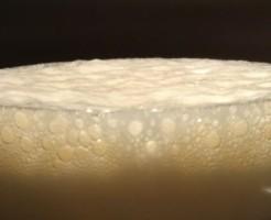 オクトーバーフェスト横浜の値段の謎と最高の2杯