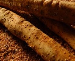 山芋のかゆみの原因と対策、アレルギーの危険性