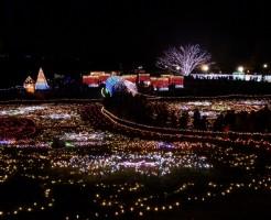 昭和記念公園イルミネーションの期間と混雑情報