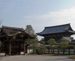 仁和寺の紅葉ライトアップと見ごろ、混雑状況