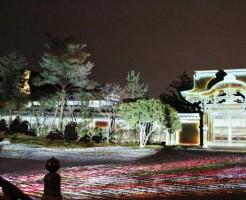 高台寺の紅葉ライトアップの見ごろと時間の注意