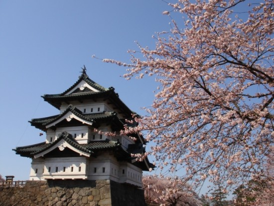 弘前城の桜祭りに行く前に知りたい事
