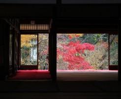 南禅寺の紅葉ライトアップの見ごろと注意点